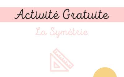 Activité Pratique – La Symétrie