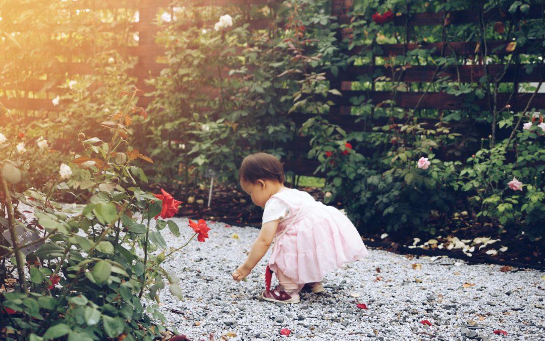 Les périodes sensibles – Les petits objets